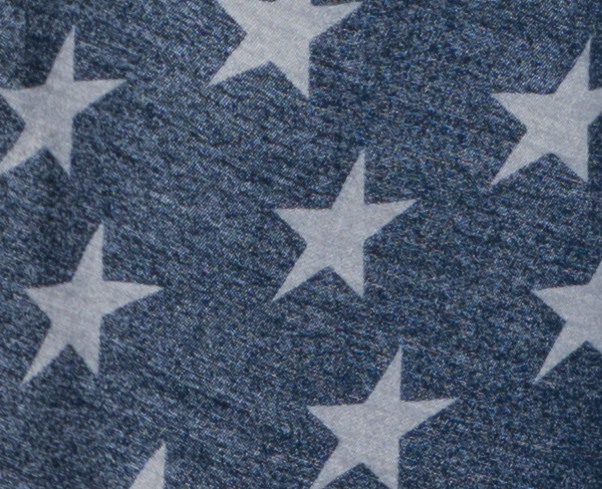 A 100% Crop of the flag photo seen in the EVF section.